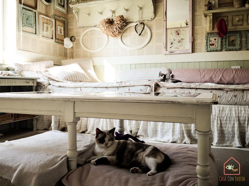 Casa Shabby Chic Camera doppia ragazze gatti