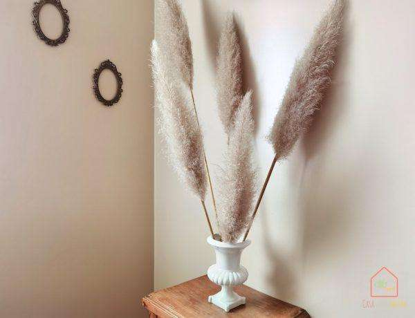 pampas-decor