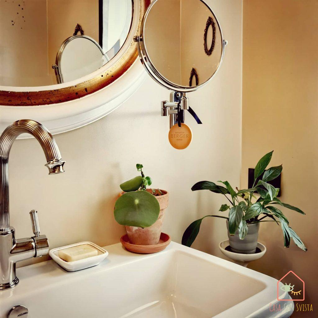piante-bagno