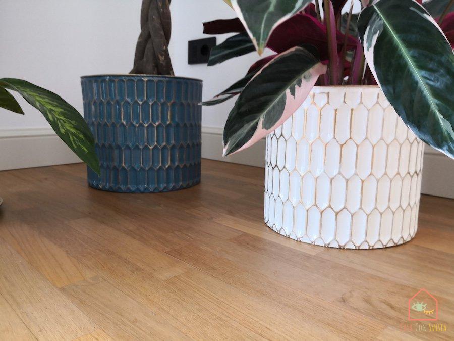 vasi-piante-decor