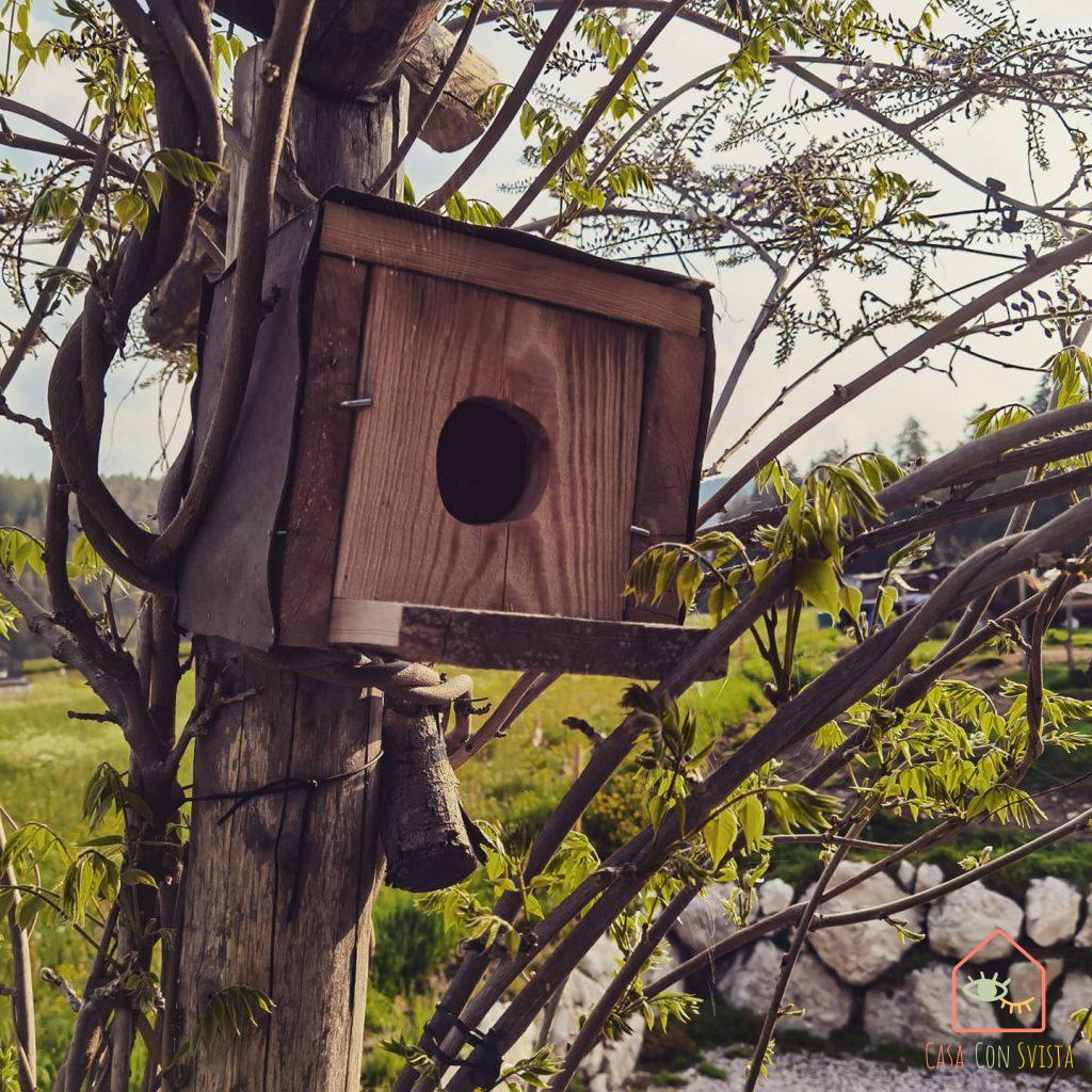 bblupo-val-di-non-casetta-uccellini